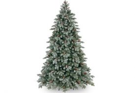 Frosted Caldwell Spruce Tree by National Tree Company